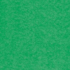 Brystol zielony A1
